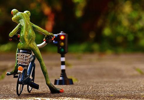 frog-1726765_960_720.jpg
