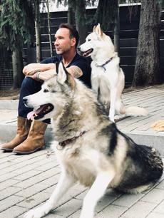 Huskies - gefühlte Freiheit