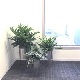 Office trio decor