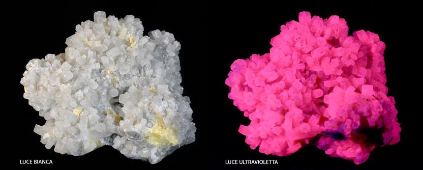 Aragonite fluorescente - Sicilia