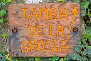 Tamba_Andrista.jpg