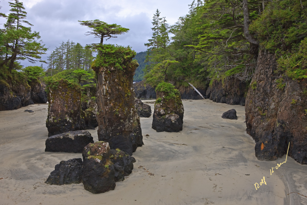 sea stacks cape scott