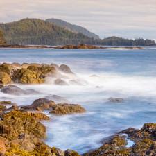 Cape Scott Coast