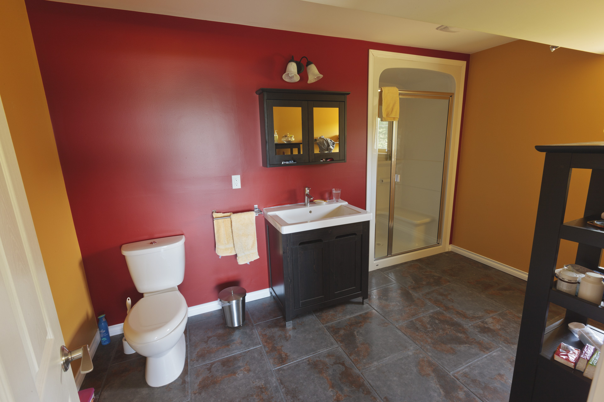 Ensuite Bathroom Lower Suite