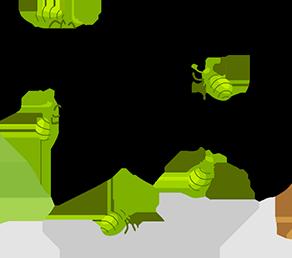 Go Eat A Bug