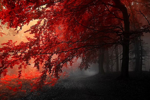 Trees Red
