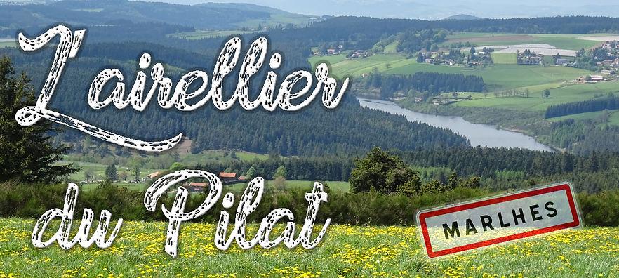 Airellier du Pilat