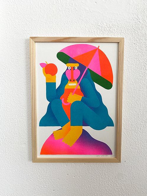 Baboon Riso print A4