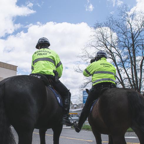 A Salute on Horseback