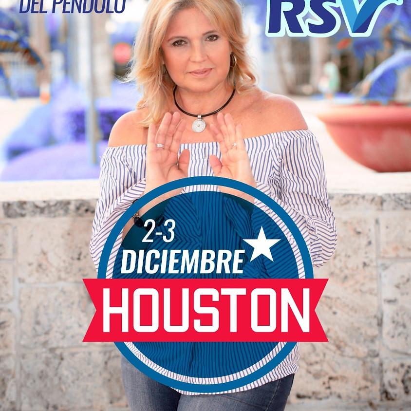 Taller RSV en Houston, TX - USA
