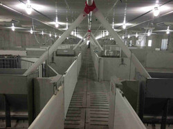 Swine Facilities