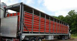 Understanding the Transition to Modular Loading in Poultry Barns