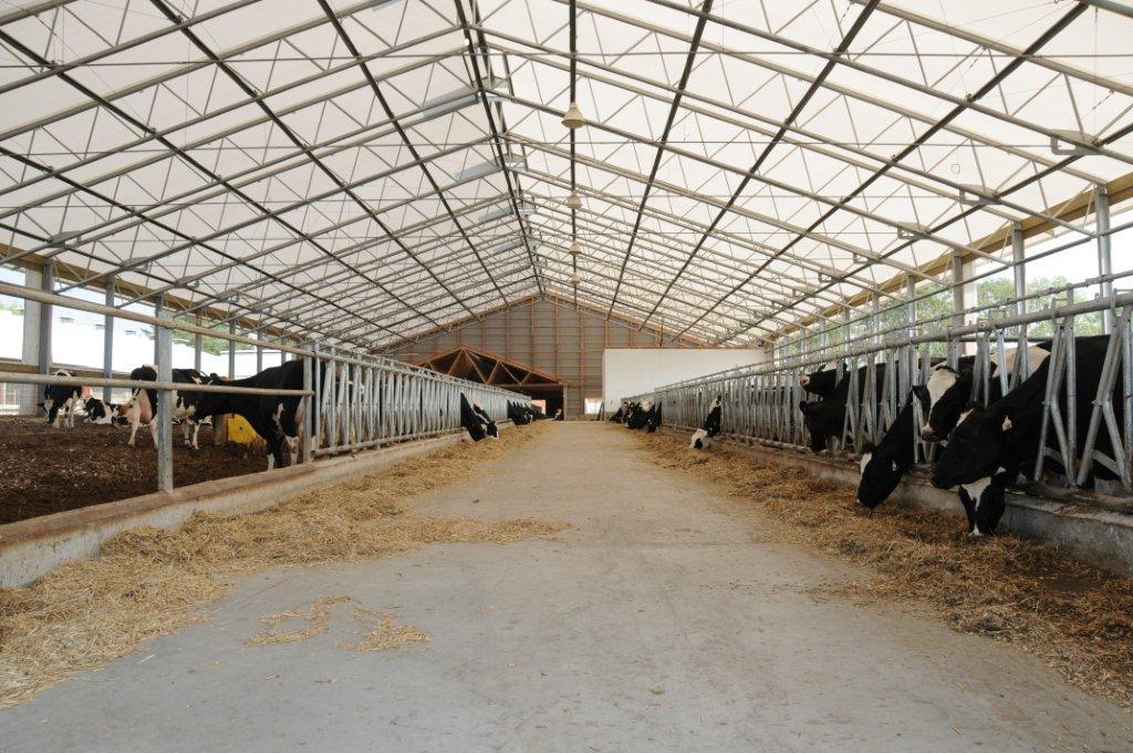 Fabric & Steel Facilities