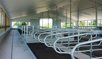 Considerations in designing a new dairy facility or expanding an existing one