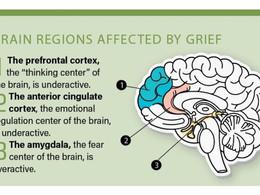 Grief Brain Made Me Run A Red Light!