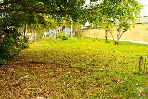 Área com grama
