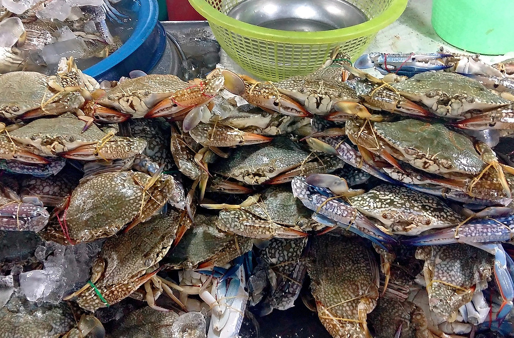 Crabs at a seafood stall at a Thai market