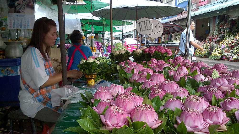 Lotus flowers at Pak Khlong Talat flower market in Bangkok, Thailand - photo by Arun Katiyar