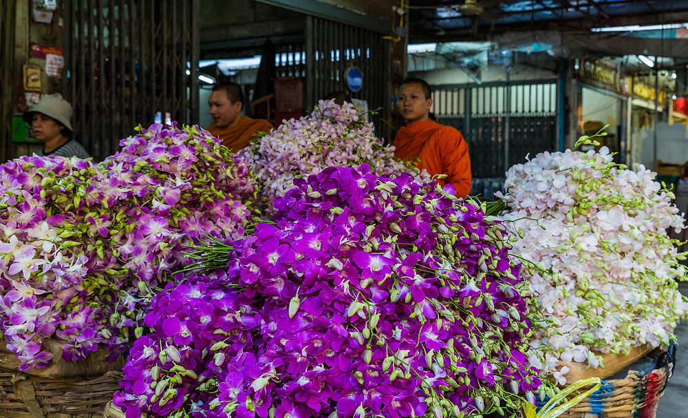Orchids at Pak Khlong Talat flower market in Bangkok, Thailand - photo by Ninara