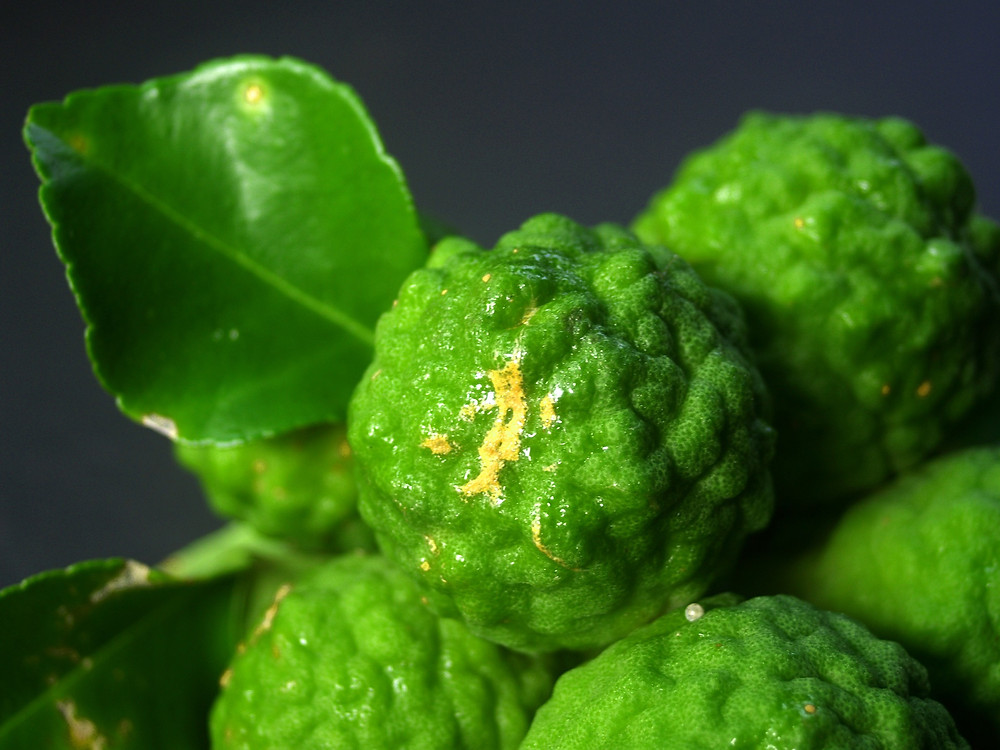 Kaffir lime leaves can be particularly hard to come by outside of Thailand