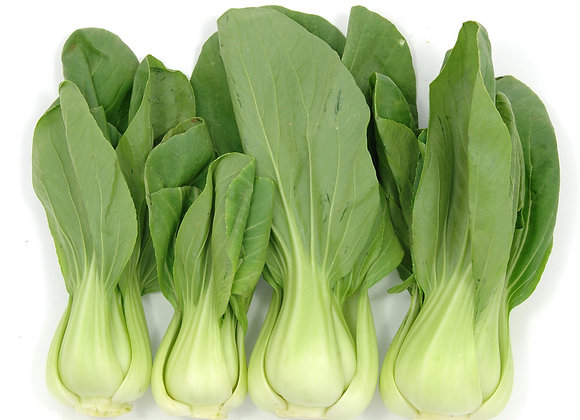 Cabbage: Bok Choy