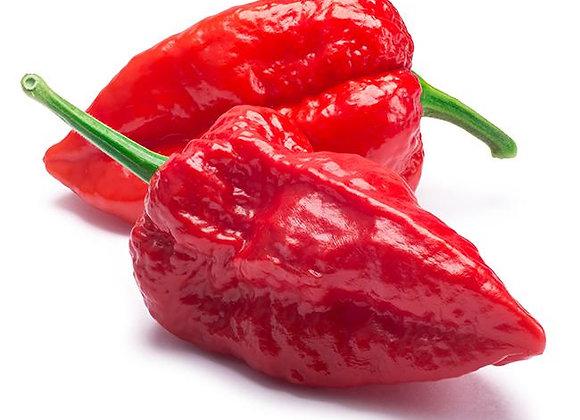 Pepper: Jolokia Ghost (Promente)