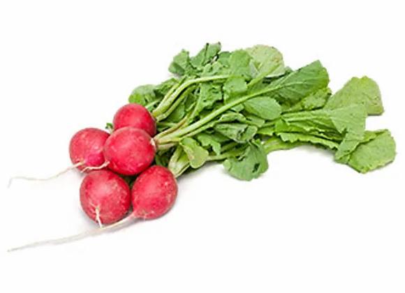 Radish: Cherry Belle