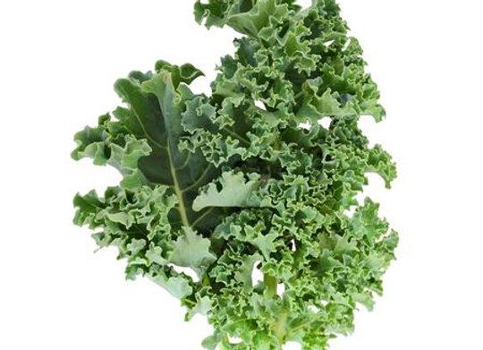 Kale: Starbor (Boerenkool)