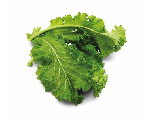 Cabbage: Am Choy