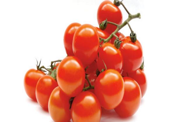 Tomato: Cherry