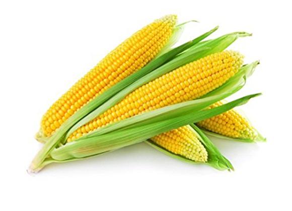 Corn: On the Cob (Maishi Grandi)