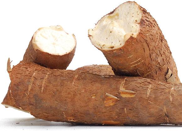 Cassava (Yuka)