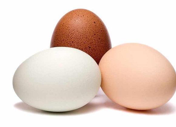 Eggs (Webu)