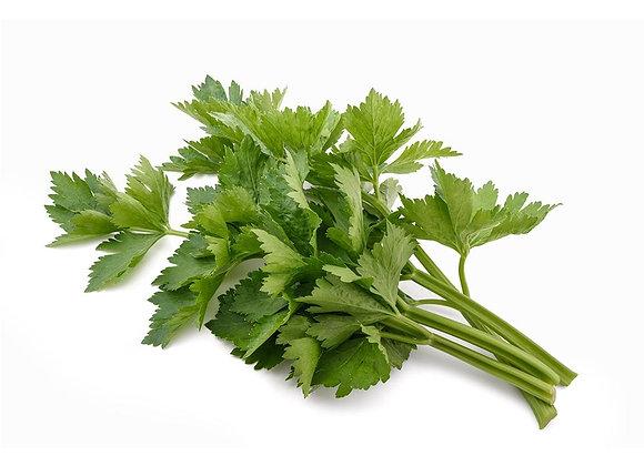 Celery: Leaf (Seldu)
