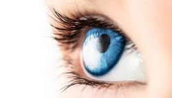 regualar eye care