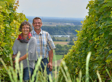 Weinwanderung durch die Laubenheimer Lagen
