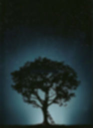 arbre de vie affiche.jpg