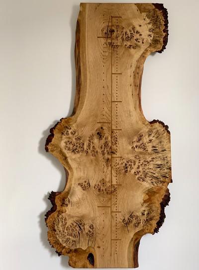 Oak Height Chart SS001