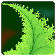 fern-fractal-maade-tuule_edited.jpg