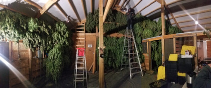Halfway through this barn!