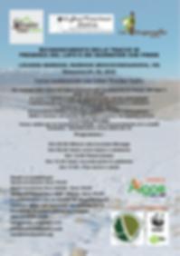 Schermata 2019-01-16 alle 13.02.17.png