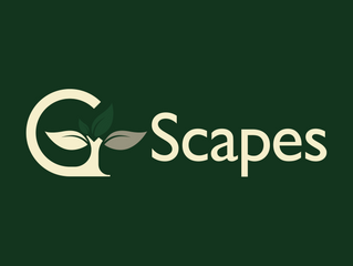 G-Scapes