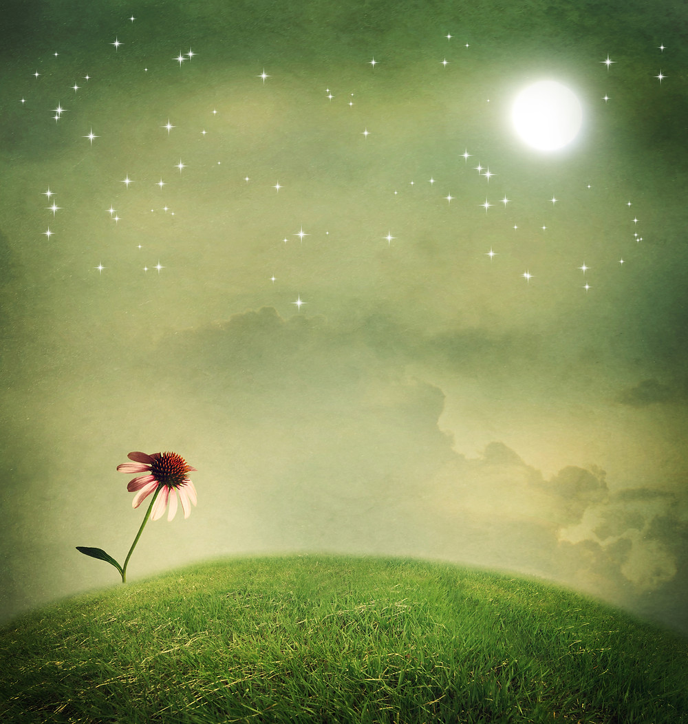 The Wesak Moon