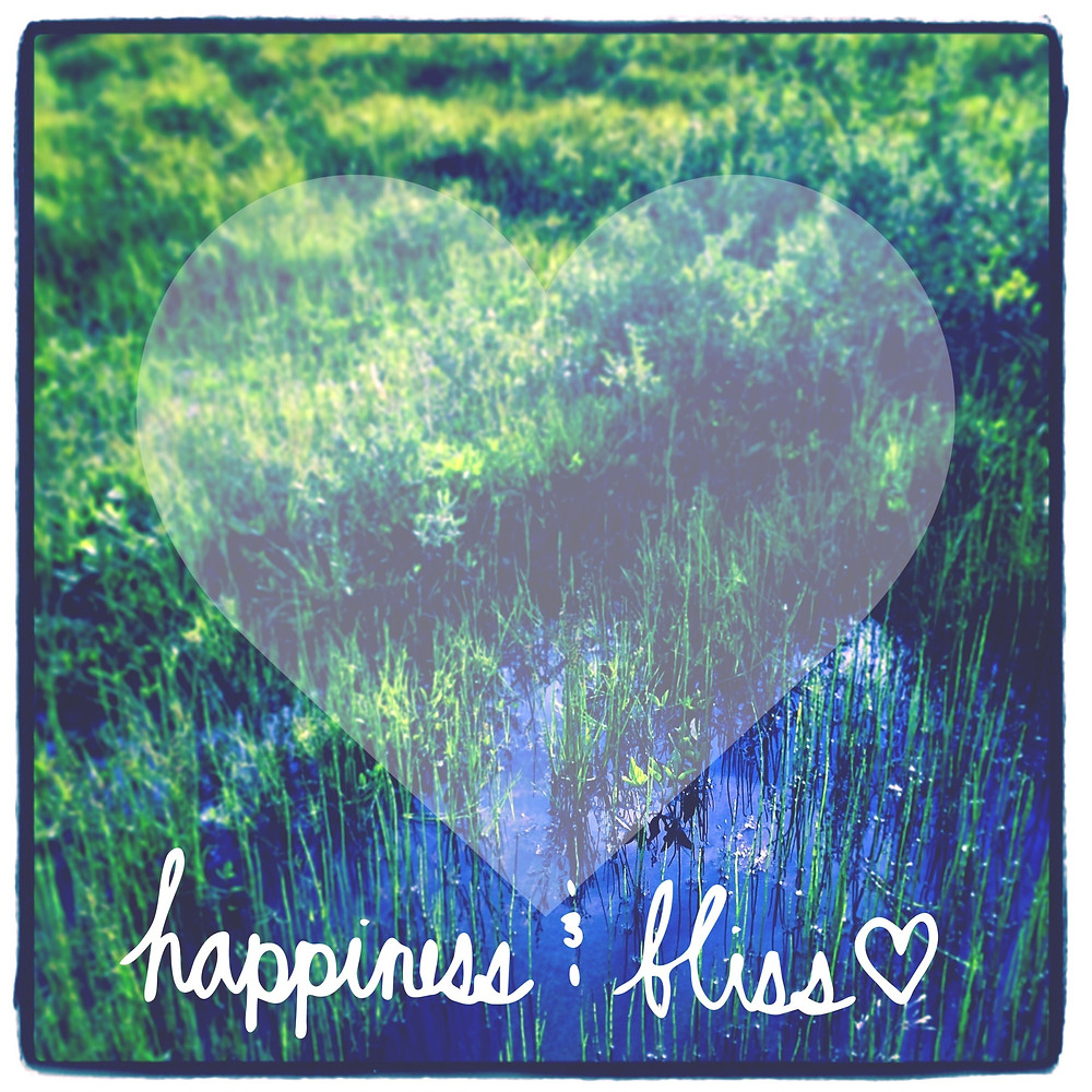 Inspirational Typographic Quote - happiness bliss.jpg