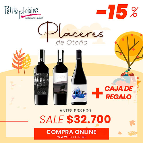Pack: Placeres (15% dcto)