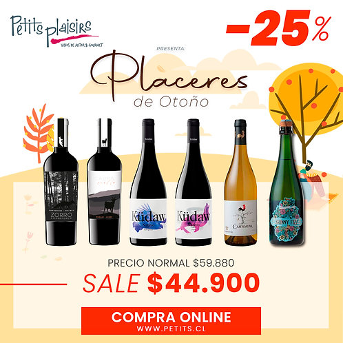 Pack: Placeres (25% dcto)