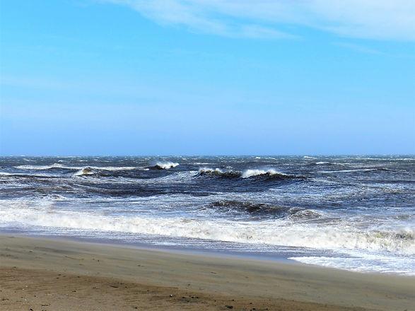 a windy ocean view