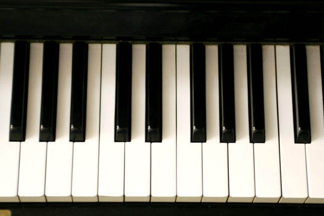 Learn to play the piano.