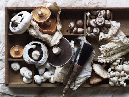Mushroom Immunity Soup