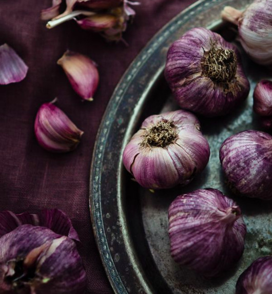 Garlic for antibacterial, antimicrobial actions